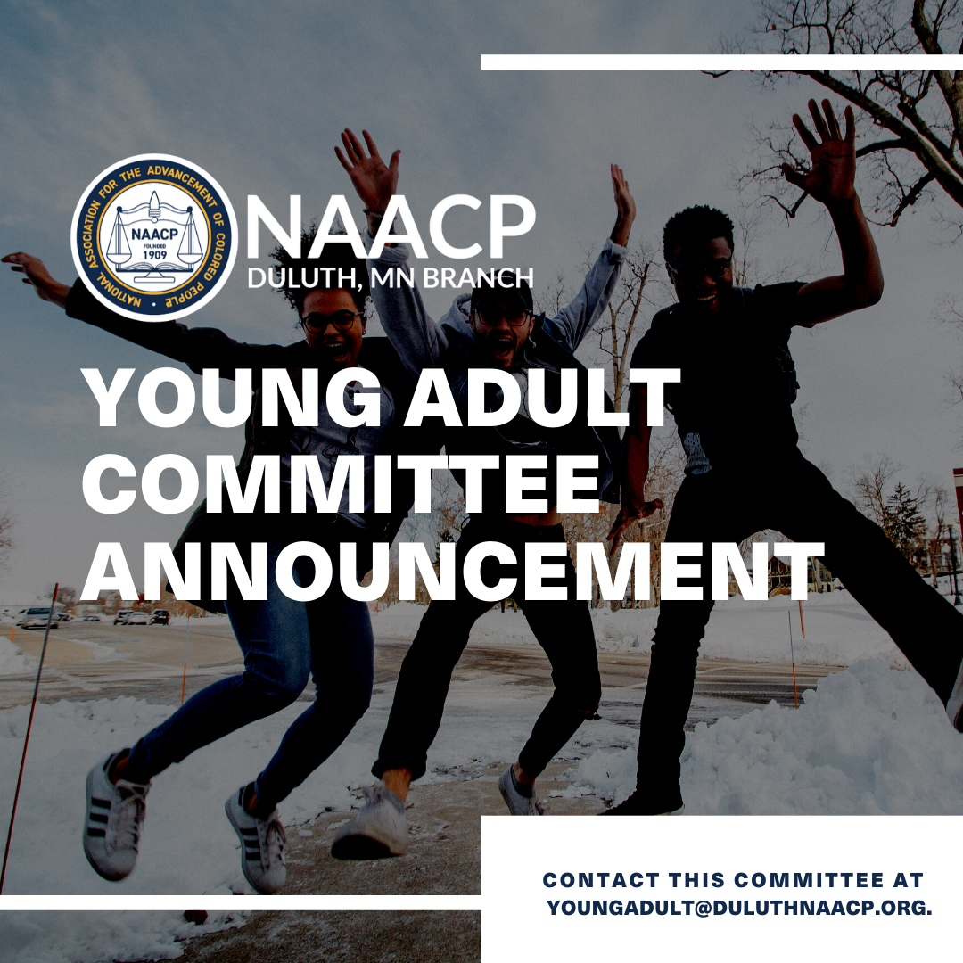 NAACP Young Adult Committee: contact this committee at youngadult@duluthnaacp.org